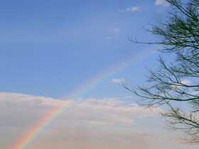 rainbow_280